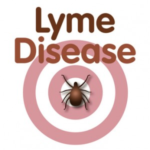 Removing Obstacles as Treatment for Chronic Lyme Disease